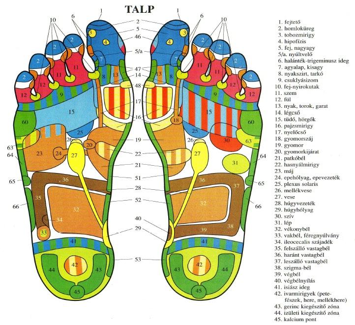 akupunktúrás pontok a visszér kezelésére