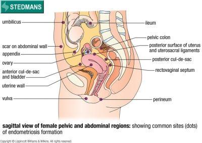 gyakorlatok a perineum visszerére