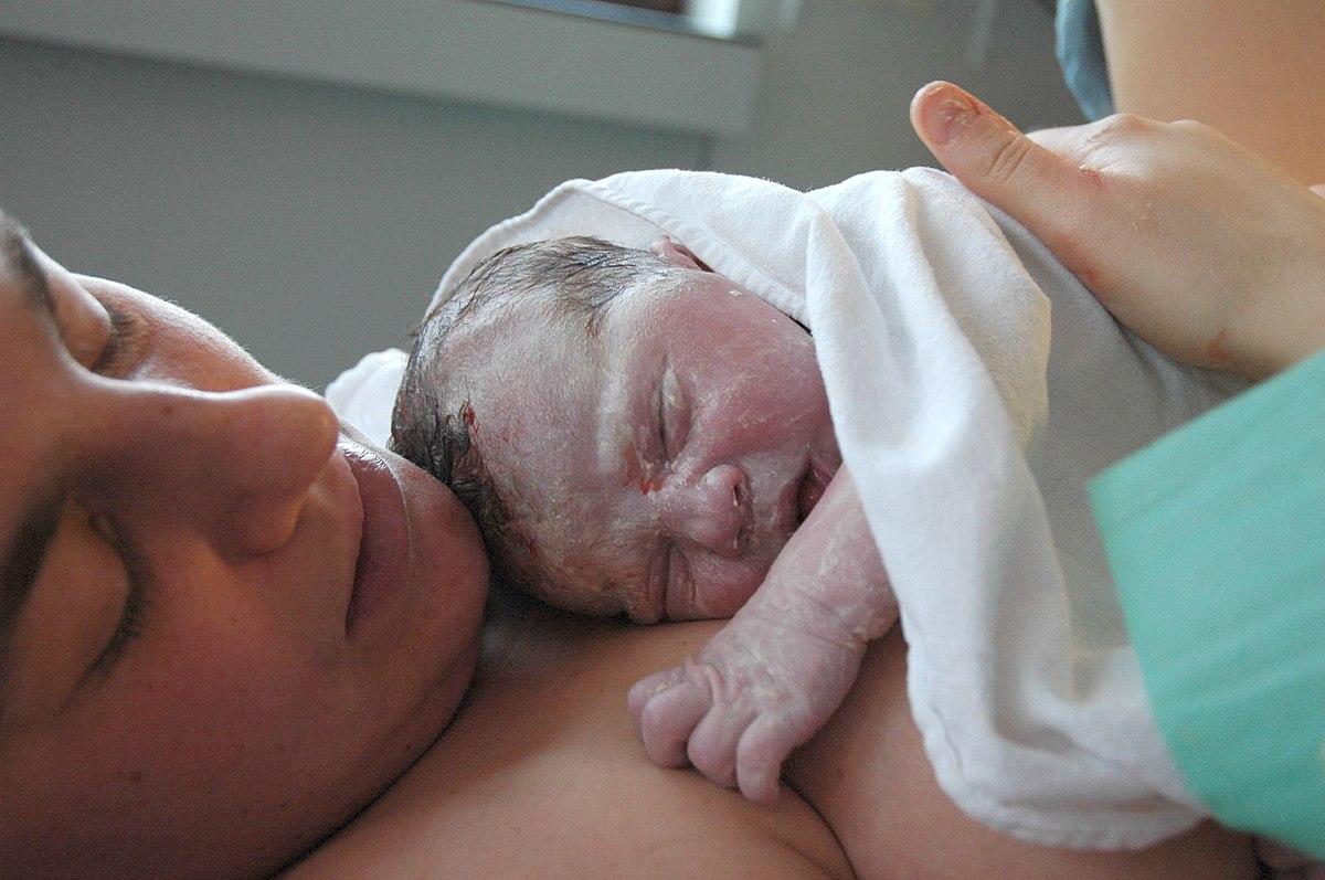 A női kismedence varikózus vénei: ki segíti - a phlebológus vagy a nőgyógyász?